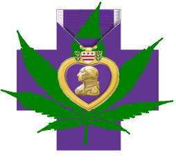 JOIN the CAMPAIGN! Medical Cannabis for PTSD for Veterans, Police, Firefighters and Other American Citizens
