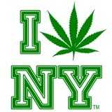 New York - Rally, Capitol District Cannabis Consortium (CDCC), FOR THE LEGALIZATION OF MEDICAL MARIJAUNA AND THE OVERALL LEGALIZATION OF CANNABIS IN NEW YORK STATE