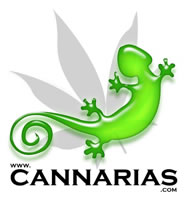 Spain - Resource, Org; local - Cannarias.com